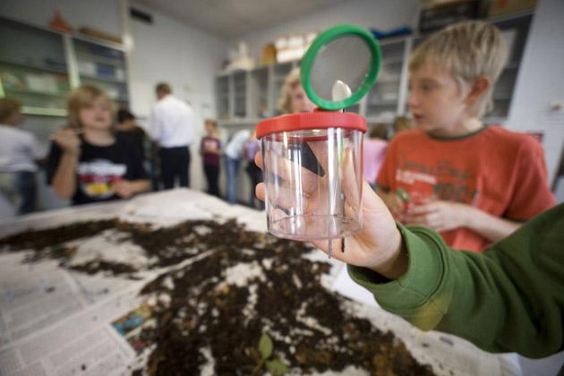 Durchführung des Schulentwicklungsvorhabens 'Integrierter naturwissenschaftlicher Unterricht am Gymnasium'