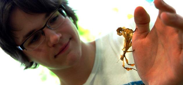 Einer, der sich in der Insektenwelt auskennt